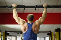Back view of strong male athlete with perfect muscles training, doing exercises. Stock footage stock photo