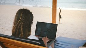 Back view successful CEO businesswoman focused on laptop financial diagrams in lounge chair on exotic ocean resort beach