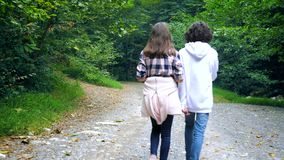 Back view . teenage girl and boy walking and talking together in the park stock footage