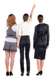 Back view of three beautiful young bussineswoman looking Stock Photography