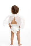 Back View Of Toddler Wearing Nappy And Angel Wings Royalty Free Stock Images