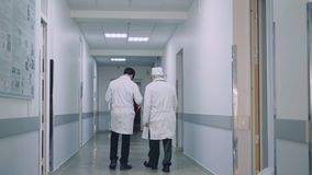 Back view of two doctors walking on hospital`s corridor and advising. 4K stock video footage