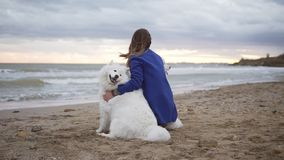 Back view of two white samoyed dogs and young woman sitting together on the sand by the sea. White fluffy pets on the. Beach looking at the sea. True friendship stock video footage