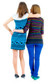 Back view of two young  brunette standing woman Stock Photography