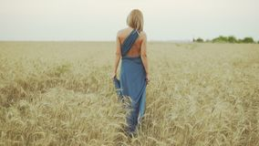 Back view of unrecognizable woman with blond hair in long blue dress walking through golden wheat field. Freedom. Concept. Slowmotion shot stock video