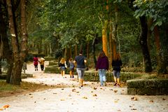People Walking in the Park royalty free stock photo