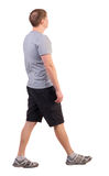 Back view of walking handsome man in shorts and sneakers Royalty Free Stock Photography