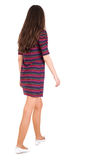Back view of walking woman. Girl with long black hair in stripped mini-dress and white shoes. Isolated over white background. beautiful brunette girl in motion royalty free stock images