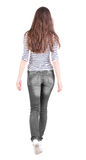 Back view of walking woman in jeans . Beautiful brunette girl in motion. backside view of person. Rear view people collection. Isolated over white background royalty free stock image