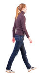 Back view of walking  woman  in  sweater Royalty Free Stock Photo