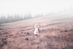 Back view of a woman on meadow royalty free stock photo