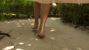 Back view of woman`s feet going to spa room bungalow on exotical tropical island. Smiling blonde girl walks barefoot on. White sand near palms on Maldives stock video