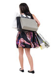 Back view of woman with shopping bags. Stock Image