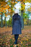 Back view of woman walking in autumn park. Or forest Royalty Free Stock Images