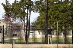 Back view of worker installing Christmas lights on the wrought iron fence around an estate with trucks parked inside and tall pine. Trees royalty free stock photo