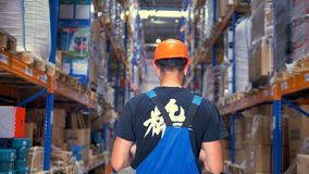 A back view on a worker looking up warehouse racks. stock video footage