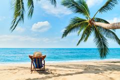 Back view of young beautiful woman sunbathe and relax on tropical beach with copy space royalty free stock photos
