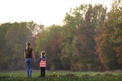 Back view of young slim attractive mother and child girl standing in green meadow holding hands outdoors on forest trees blurred. Background stock photography