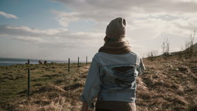 Back view of young stylish woman walking on the nature, outside the city through the field near the horses farm. Beautiful female spending leisure time alone stock footage