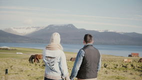 Back view of young tourists couple standing on the Iceland ranch and looking on the famous national horses. stock video footage