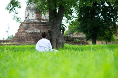 Back view. young woman be meditation on green grass field under. Back view. young asia woman be meditation on green grass field under big tree with old pagoda Stock Image