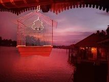 Twilights. Back water sunset Royalty Free Stock Photo