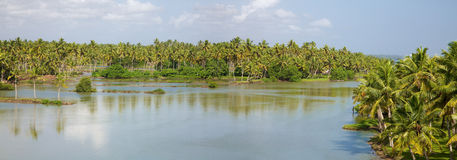 Back Waters in Kerala Stock Photos