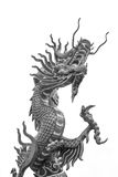Back & white color Dragon in Chinese temple Stock Images