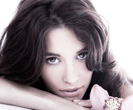Back and white portrait of beautiful woman royalty free stock images
