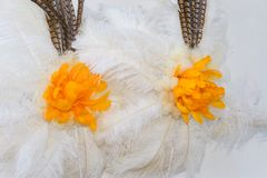 Back of white and yellow feathers for carnival. White and yellow feathers of the backs for the carnival stock photo