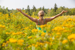 Back of woman practicing yoga in meadow of yellow flowers Royalty Free Stock Images