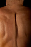 Back woman spine. The muscled back and spine of a girl Stock Photo