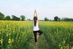 Woman yoga meditation flower field. Back of woman who is yoga in flowers field under light blue sky.& x28;Horizental image and model on center& x29 Stock Photos