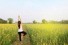 Woman yoga meditation flower field. Back of woman who is yoga in flowers field under light blue sky.& x28;Horizontal image and model on the left& x29 Stock Images
