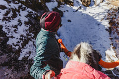 Back of the yak head and guide tamer in winter in Tashi Delek near Gangtok. North Sikkim, India. Royalty Free Stock Image