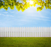 Back Yard background Royalty Free Stock Images