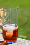 Back yard ice tea Royalty Free Stock Images