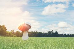Back Of Young Beautiful woman holding multicolored umbrella in g. Reen grassland field and cloud blue sky Stock Photo