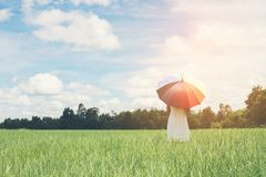 Back Of Young Beautiful woman holding multicolored umbrella in g. Reen grassland field and cloud blue sky Royalty Free Stock Photography
