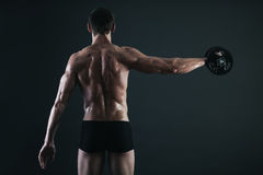 Back of young male bodybuilder doing weight exercise. With dumbbells Stock Image