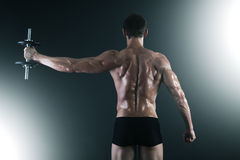 Back of young male bodybuilder doing weight exercise. With dumbbells Royalty Free Stock Image