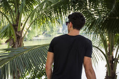 Back of young man near palm trees Royalty Free Stock Photos