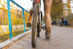 Back of Young Man Riding Bicycle in Urban Park Stock Photography