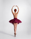 Back of a young topless ballerina in a tutu Royalty Free Stock Photography