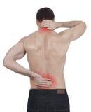 Backache Royalty Free Stock Image