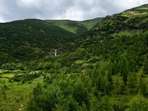 Backar ren natur, höga Tatras, Slovakien royaltyfri bild