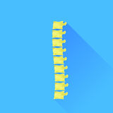 backbone Imagens de Stock
