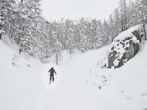 Backcountry滑雪者 免版税库存图片