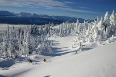 backcountry να κάνει σκι 5 Στοκ φωτογραφία με δικαίωμα ελεύθερης χρήσης