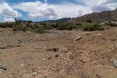 Backcountry φυσικός ερήμων, νοτιοδυτικό Νέο Μεξικό στοκ φωτογραφίες με δικαίωμα ελεύθερης χρήσης